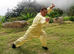 Kung Fu Form