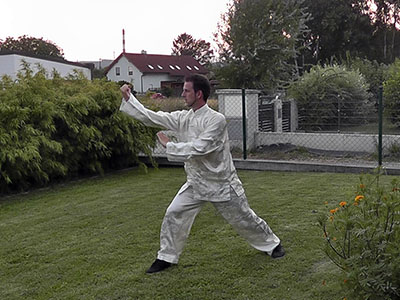 Punch vertical fist tai chi